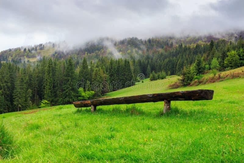 Ξύλινος πάγκος μπροστά από το κωνοφόρο δάσος στοκ φωτογραφίες με δικαίωμα ελεύθερης χρήσης