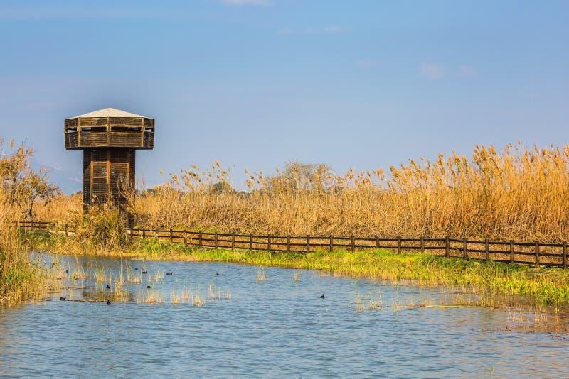 Ξύλινος πύργος για την προσοχή πουλιών στοκ φωτογραφία με δικαίωμα ελεύθερης χρήσης