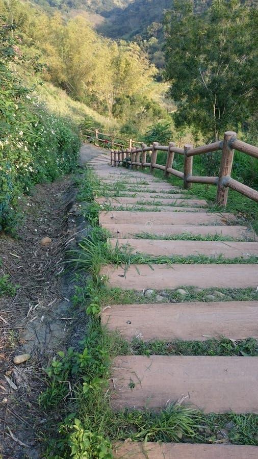 Ξύλινος δρόμος στο λόφο στοκ εικόνα