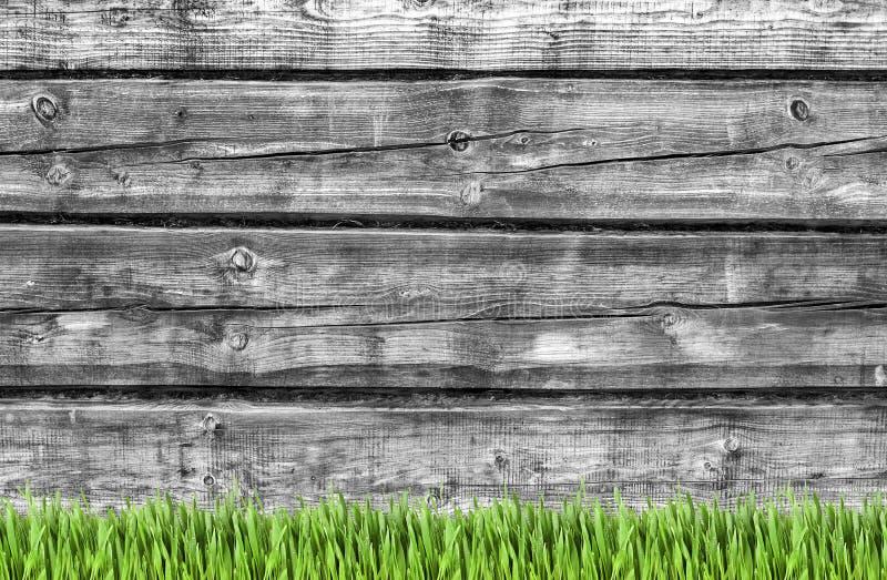 Ξύλινος τοίχος και πράσινο υπόβαθρο χλόης στοκ φωτογραφίες