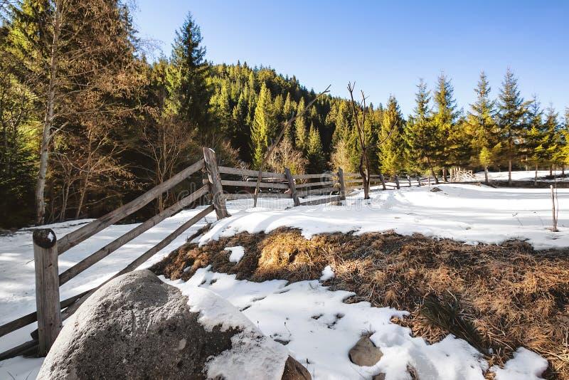 Ξύλινος φράκτης σε έναν χιονώδη τομέα στοκ εικόνες με δικαίωμα ελεύθερης χρήσης