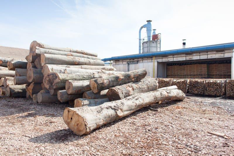 Ξύλινο εργοστάσιο την ηλιόλουστη ημέρα στοκ εικόνες με δικαίωμα ελεύθερης χρήσης