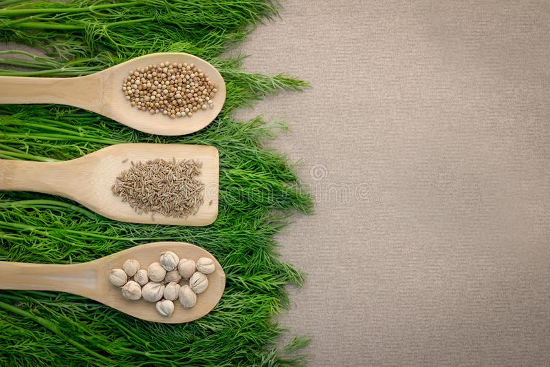 Ξύλινο κουτάλι που γεμίζουν με τα ζωηρόχρωμα καρυκεύματα με το πράσινο berb στοκ φωτογραφία με δικαίωμα ελεύθερης χρήσης