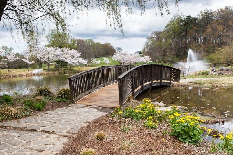 Ξύλινο περιφερειακό πάρκο της Βιρτζίνια γεφυρών για πεζούς στοκ εικόνα με δικαίωμα ελεύθερης χρήσης
