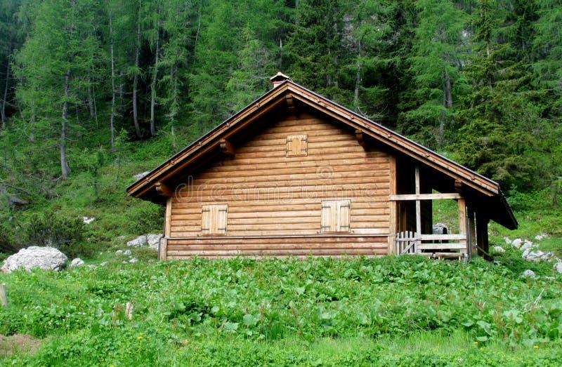 Ξύλινο σπίτι στο δάσος στοκ φωτογραφία