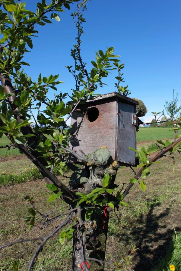 Ξύλινο σπίτι στοκ εικόνα με δικαίωμα ελεύθερης χρήσης