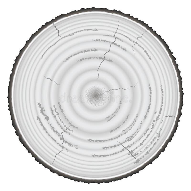 Ξύλο ξυλείας grayscale που απομονώνεται στο άσπρο υπόβαθρο απεικόνιση αποθεμάτων