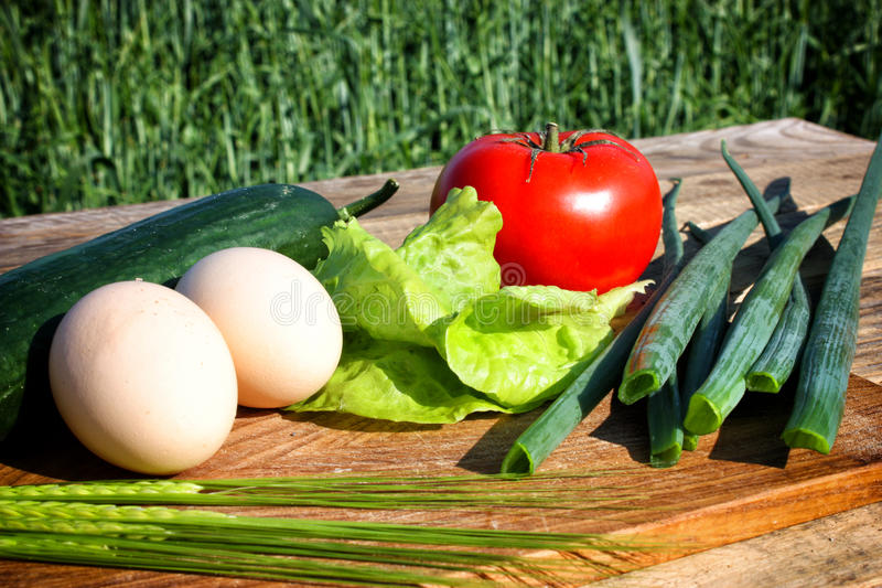 Ξύλο τροφίμων στοκ εικόνα