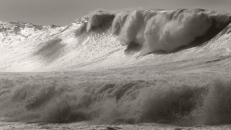 Ογκώδης κυματωγή θύελλας Waimea στοκ φωτογραφίες με δικαίωμα ελεύθερης χρήσης