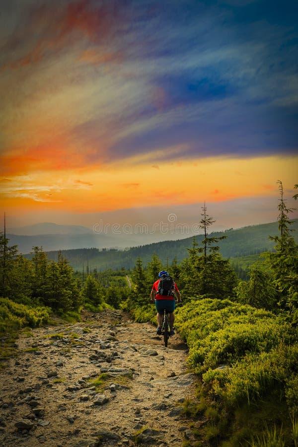 Οδήγηση ποδηλατών βουνών στο ηλιοβασίλεμα στο ποδήλατο στα θερινά βουνά εκ των προτέρων στοκ φωτογραφίες