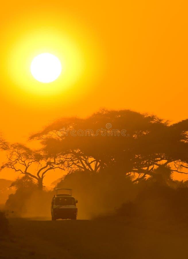 Οδήγηση τζιπ σαφάρι μέσω της σαβάνας στο ηλιοβασίλεμα στοκ φωτογραφία με δικαίωμα ελεύθερης χρήσης