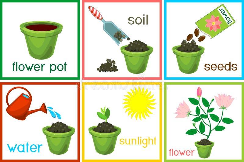 Οδηγίες για το πώς να φυτεψει το λουλούδι σε έξι εύκολα βήματα με τους τίτλους Έννοια με τα ανθρώπινα ίχνη ελεύθερη απεικόνιση δικαιώματος