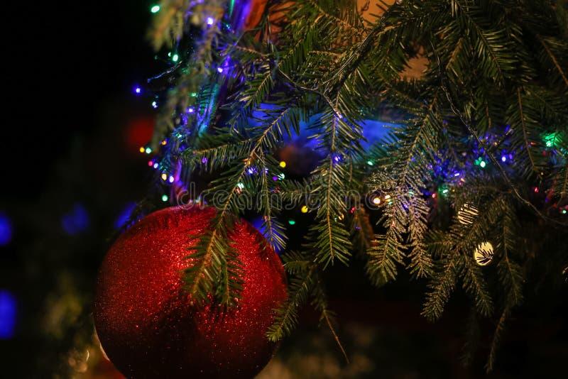 οδηγημένα Χριστούγεννα αστέρια φω'των νέου και χριστουγεννιάτικα δέντρα ιστορικό cit στοκ εικόνες
