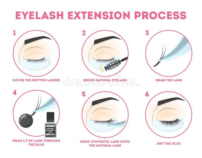 Οδηγός επέκτασης Eyelash για τη γυναίκα Infographic ?? ?? eyelashes απεικόνιση αποθεμάτων
