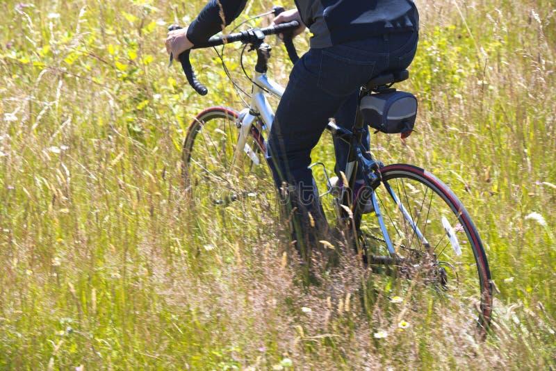 Οδηγώντας ποδήλατο ατόμων στον τομέα με την ψηλή χλόη στοκ φωτογραφία