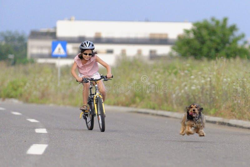 Οδηγώντας ποδήλατο κοριτσιών με το σκυλί κατοικίδιων ζώων στοκ φωτογραφίες