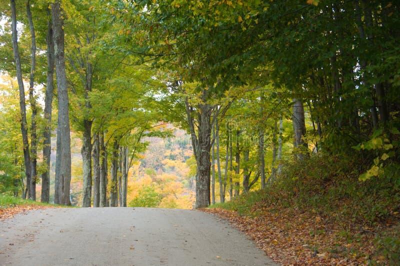οδικά δάση αμμοχάλικου φ&th στοκ φωτογραφία με δικαίωμα ελεύθερης χρήσης