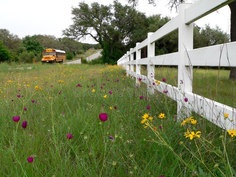 οδικό αγροτικό σχολείο &T στοκ φωτογραφία με δικαίωμα ελεύθερης χρήσης