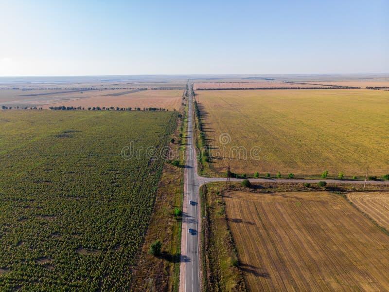 Οδικό δίκρανο στον τομέα με τους ηλίανθους Κριμαία στοκ εικόνες με δικαίωμα ελεύθερης χρήσης