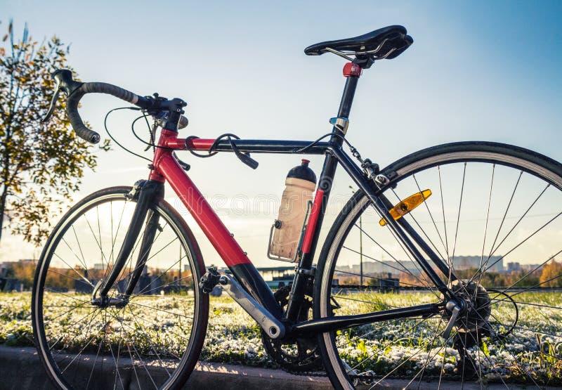 Οδικό ποδήλατο φυλών στοκ εικόνα