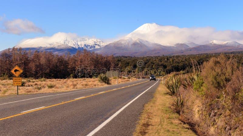 Οδικό σημάδι και ηφαίστειο Ngauruhoe ακτινίδιων στο εθνικό πάρκο Tongariro στοκ εικόνες