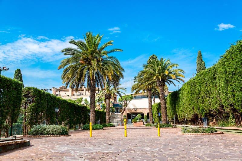 Οδοί της Βαρκελώνης με τους φοίνικες και τους πράσινους φράκτες, Ισπανία στοκ φωτογραφία