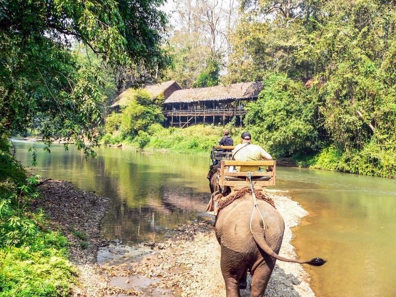 Οδοιπορία ελεφάντων τουριστών στοκ φωτογραφίες με δικαίωμα ελεύθερης χρήσης