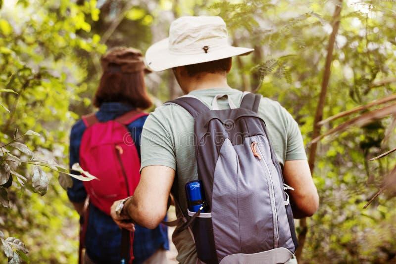 Οδοιπορία ζεύγους μαζί στο δάσος στοκ εικόνα με δικαίωμα ελεύθερης χρήσης