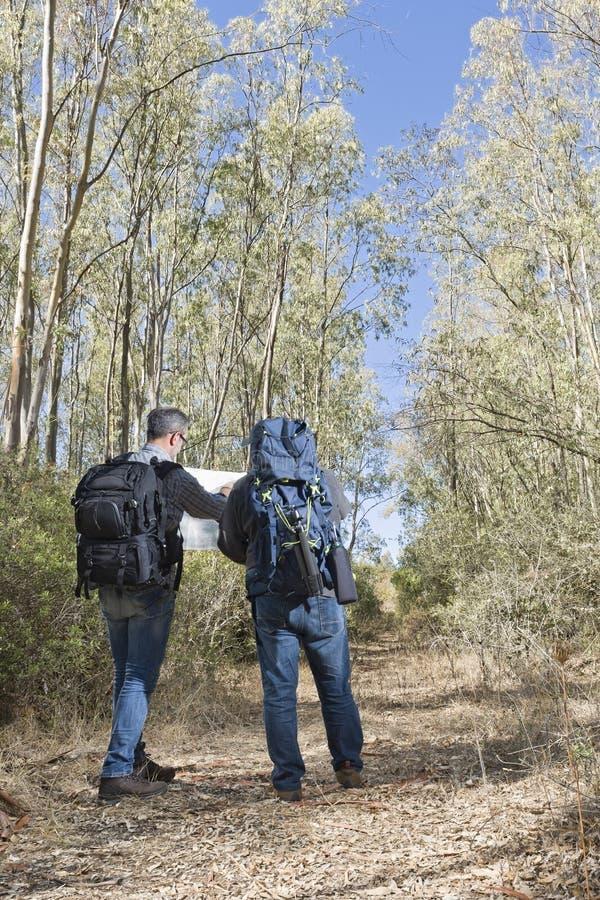 Οδοιπόροι που χάνονται στο δάσος στοκ εικόνα