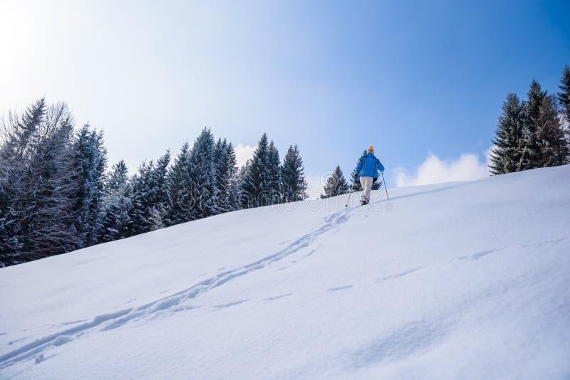 Οδοιπόρος με τα πλέγματα σχήματος ρακέτας στο ίχνος χιονιού στο χειμερινό τοπίο του δάσους σε Oberstdorf, Άλπεις της Βαυαρίας στο στοκ φωτογραφία