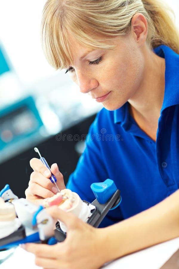 οδοντοστοιχίες οργάνω&nu στοκ φωτογραφία με δικαίωμα ελεύθερης χρήσης