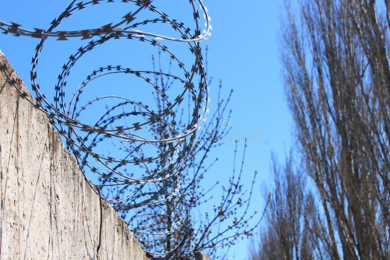 Οδοντωτός - καλώδιο στο φράκτη με το μπλε ουρανό, η έννοια της φυλακής, σωτηρία, διάστημα αντιγράφων στοκ φωτογραφία με δικαίωμα ελεύθερης χρήσης