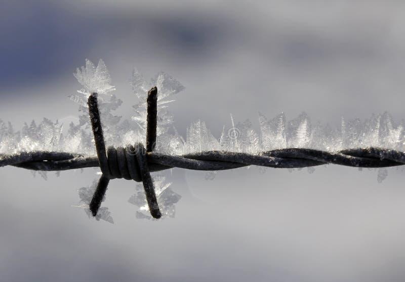 Download οδοντωτό καλώδιο πάγου &kapp Στοκ Εικόνες - εικόνα από χαμηλότερος, βαρκελώνη: 13177454