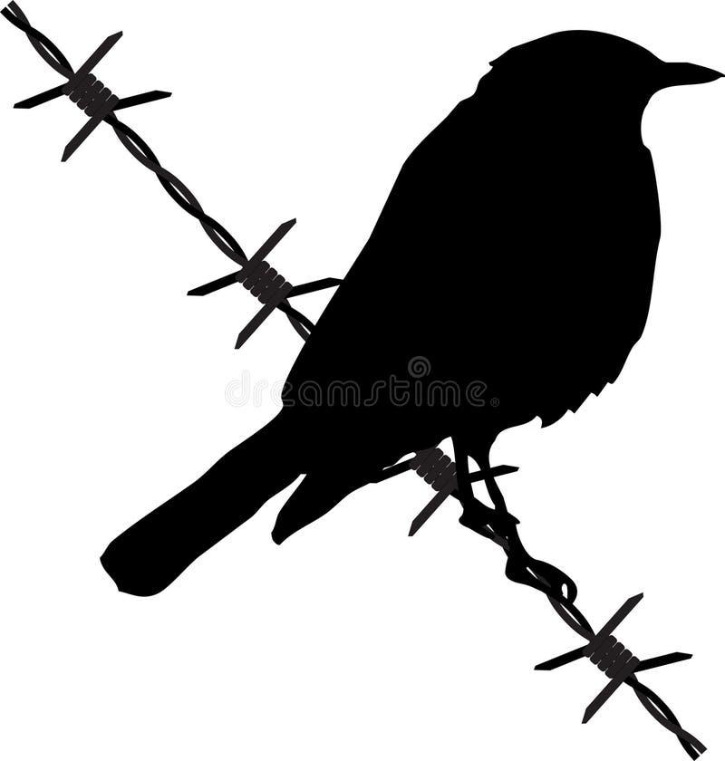 οδοντωτό καλώδιο πουλι ελεύθερη απεικόνιση δικαιώματος