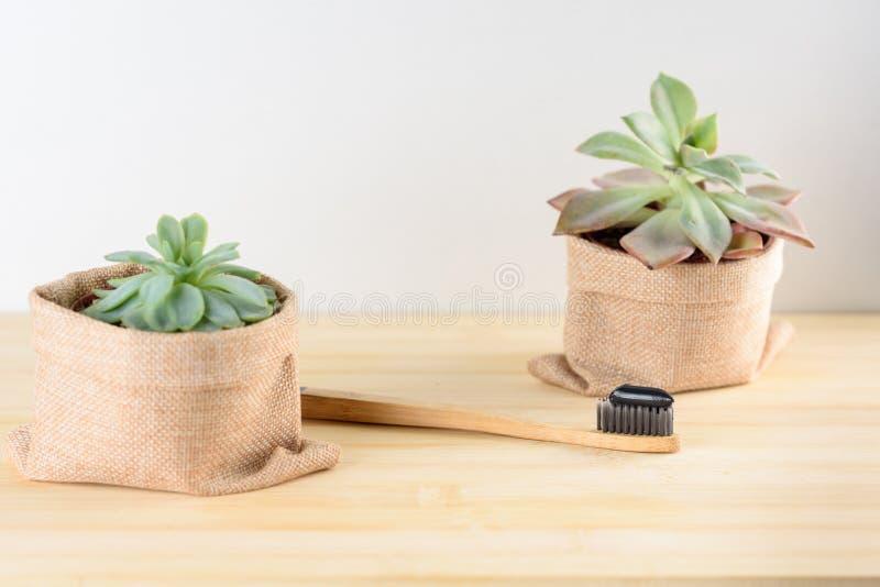 Οδοντόβουρτσα μπαμπού με την οδοντόπαστα ξυλάνθρακα στοκ φωτογραφία με δικαίωμα ελεύθερης χρήσης