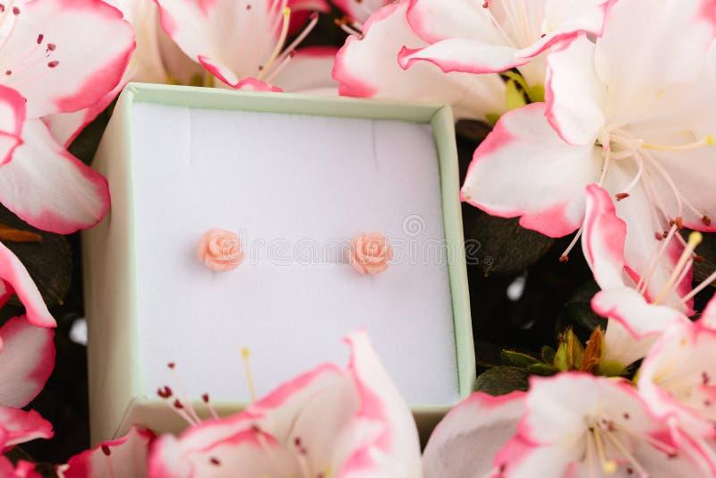 Οδοντώστε τα μικρά στηρίγματα σκουλαρικιών τριαντάφυλλων στο κιβώτιο δώρων στα λουλούδια στοκ εικόνες