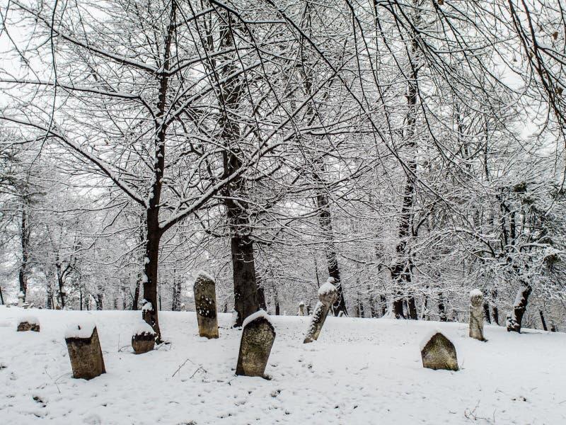 Οθωμανός tumbstones κάτω από το χιόνι στοκ εικόνα