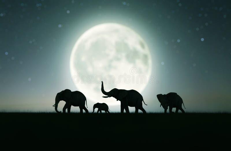 Οικογένεια ελεφάντων που περπατά στον τομέα χλόης ελεύθερη απεικόνιση δικαιώματος