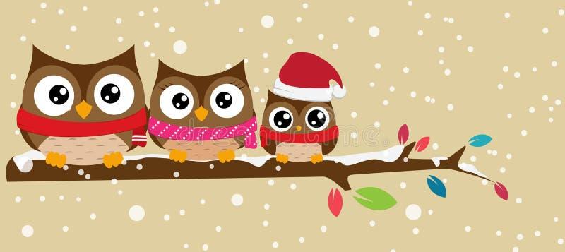 Οικογένεια κουκουβαγιών στο έμβλημα Χριστουγέννων κλάδων διανυσματική απεικόνιση