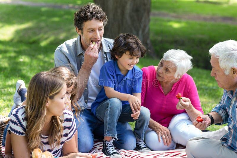 οικογένεια που έχει picnic τ&omicro στοκ φωτογραφία