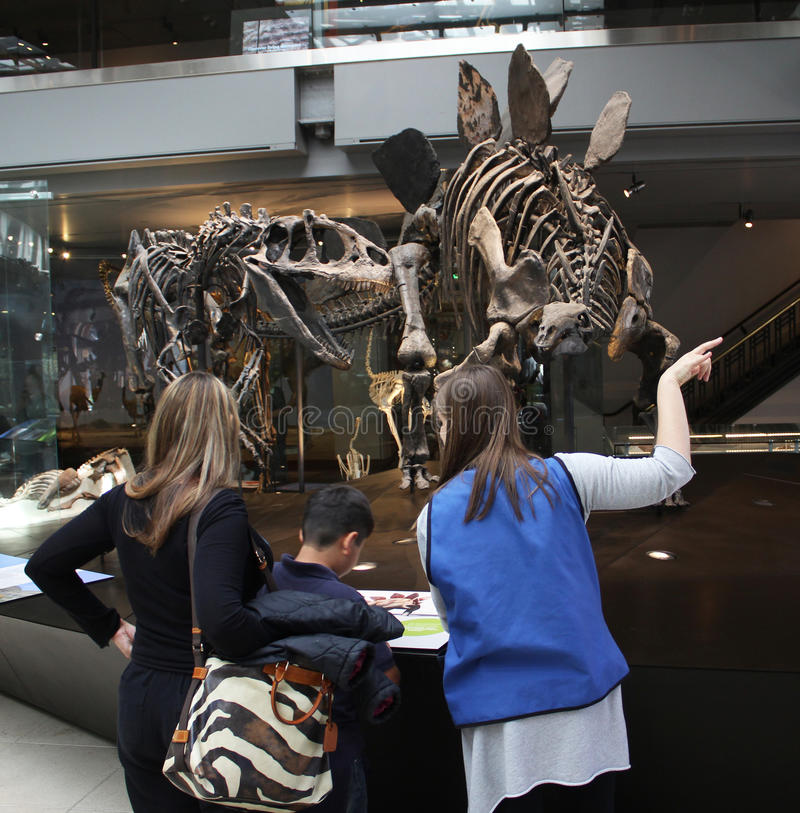 Οικογένεια που απολαμβάνει το μουσείο εκθεμάτων δεινοσαύρων στοκ εικόνες