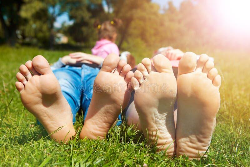 Οικογένεια που βρίσκεται στη χλόη στο πρωί στοκ φωτογραφία με δικαίωμα ελεύθερης χρήσης