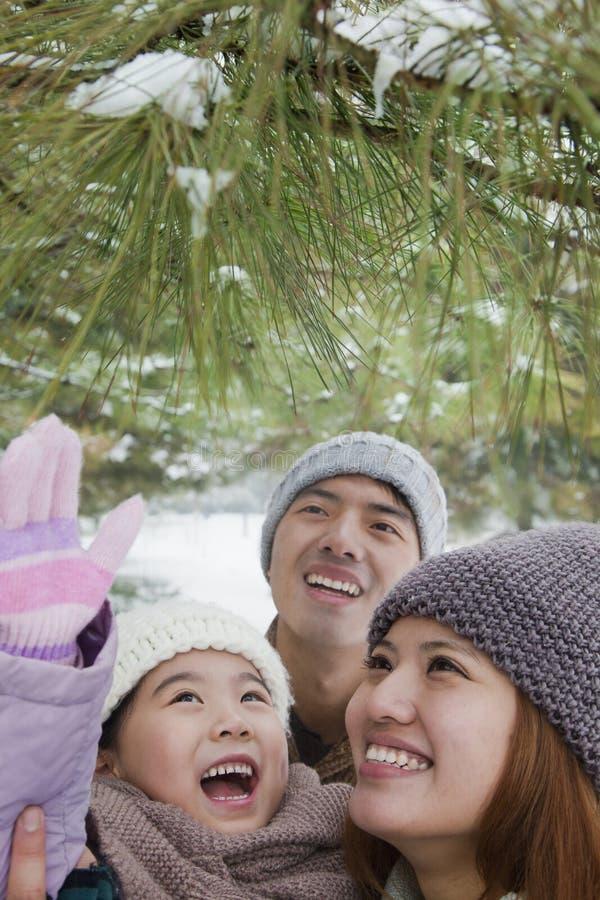 Οικογένεια που εξερευνά στο πάρκο το χειμώνα στοκ εικόνες