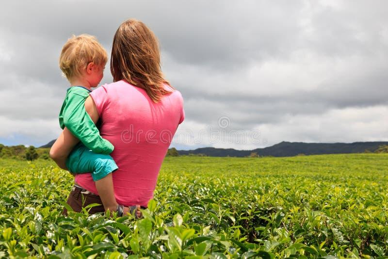 Οικογένεια που εξετάζει τον τομέα φυτειών τσαγιού στοκ εικόνες