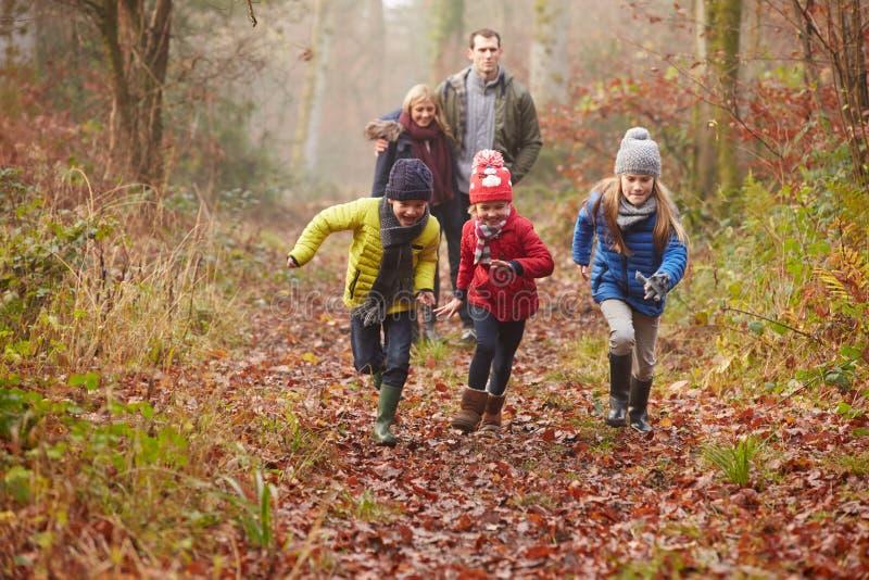Οικογένεια που περπατά μέσω της χειμερινής δασώδους περιοχής στοκ φωτογραφία