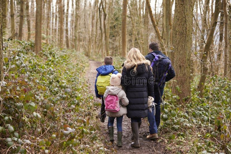 Οικογένεια που περπατά μαζί μέσω μιας ξύλινης, πίσω άποψης στοκ φωτογραφίες