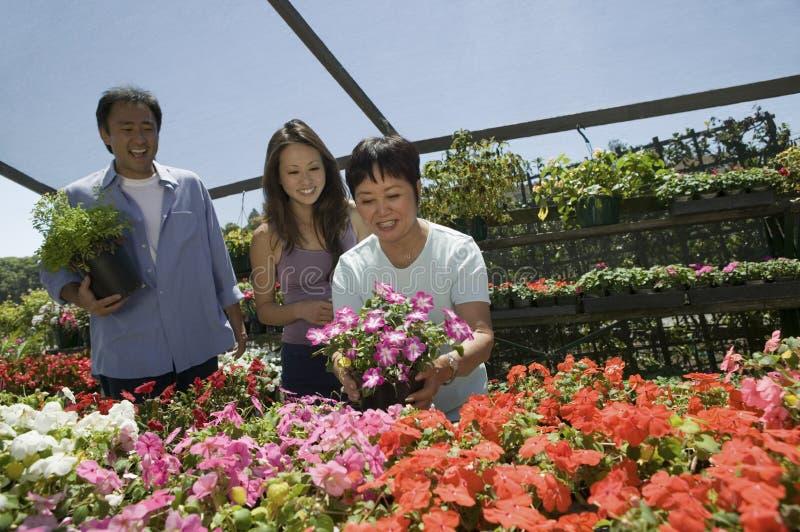 Οικογένεια που ψωνίζει για τα λουλούδια στοκ εικόνες