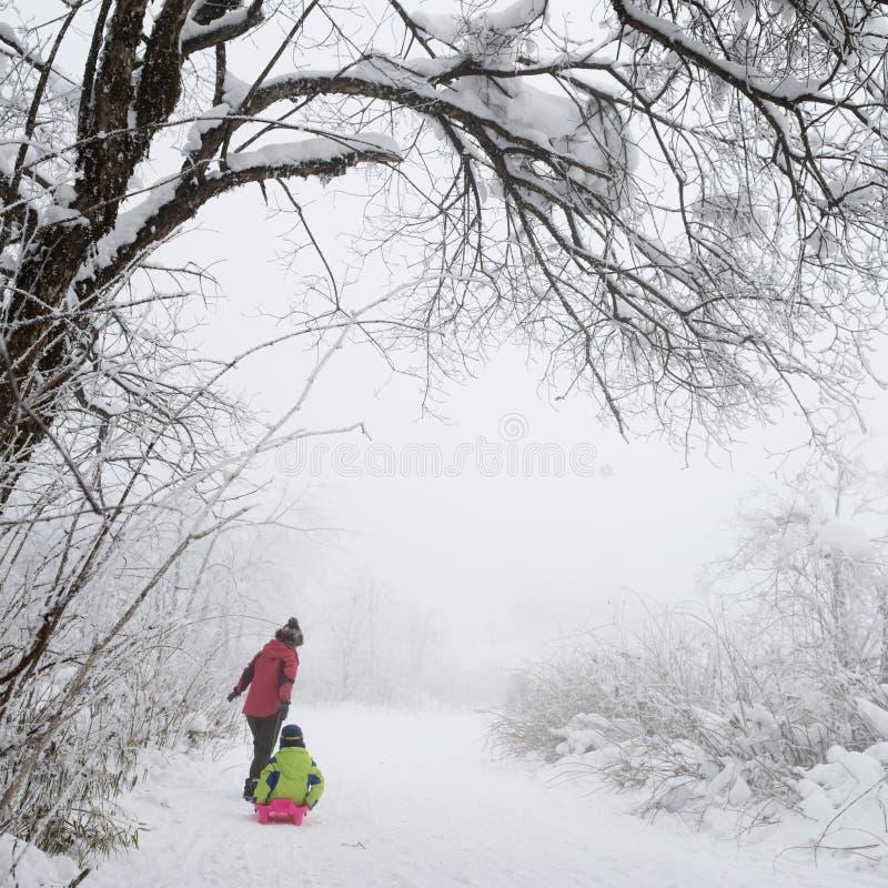 Οικογένεια στον τομέα χιονιού στοκ εικόνες
