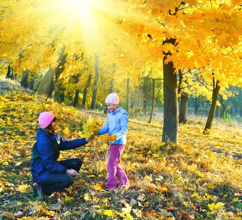 Οικογένεια στο πάρκο σφενδάμνου ηλιοφάνειας φθινοπώρου στοκ εικόνες