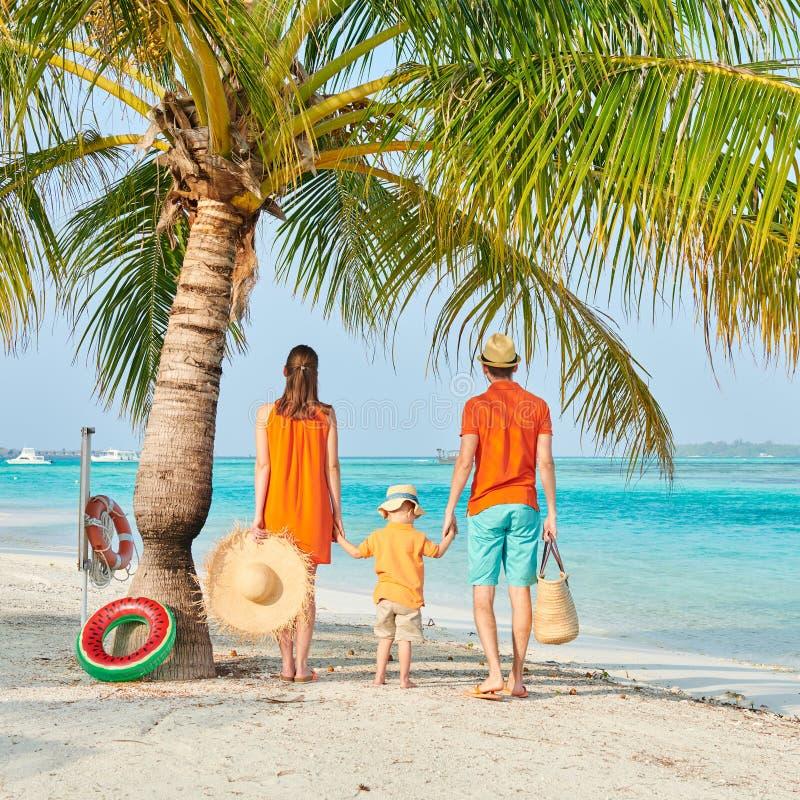 Οικογένεια τριών στην παραλία κάτω από το φοίνικα στοκ φωτογραφία